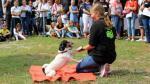 Großer Besucheransturm bei tierischem Sommerfest